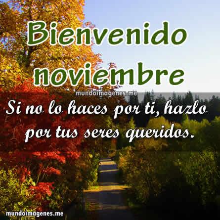 Imagenes De Bienvenido Noviembre Con Frases Bonitas Mundo