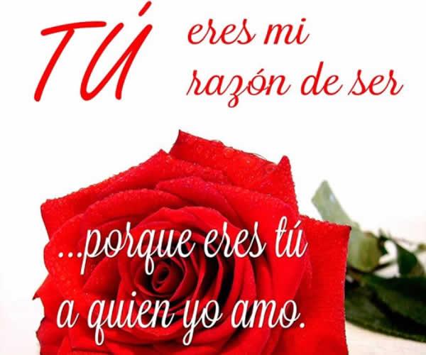 Frases De Amor Para San Valentin Con Imagenes Bonitas De: Mejores 100 Imagenes De San Valentin 2019 Frases
