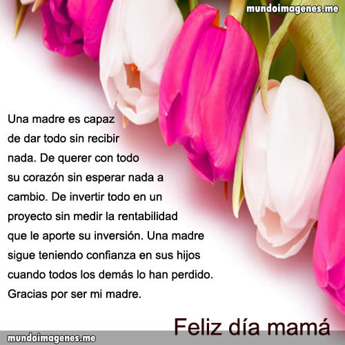 Imagenes Para El Dia De La Madre Con Frases Bonitas Mundo
