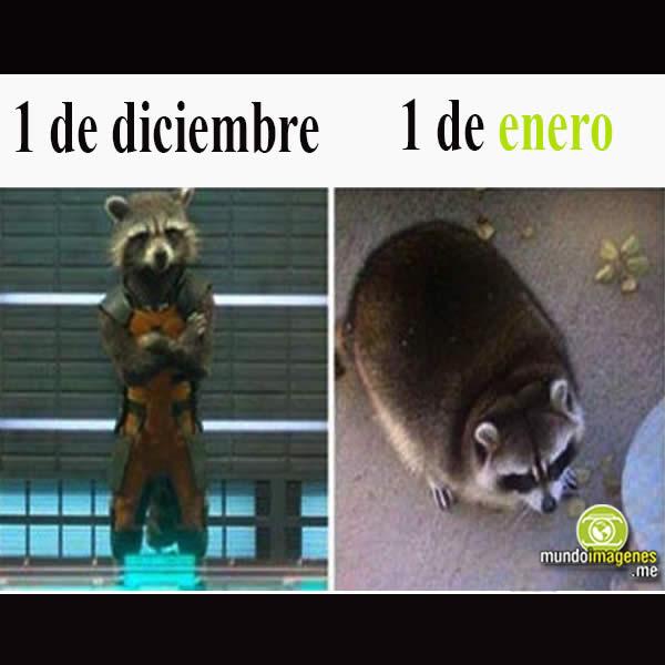 Memes Año Nuevo 2018 Imagenes Graciosas Frases Mundo Imagenes