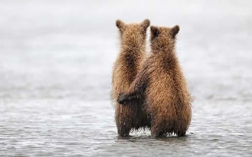 Imagenes Curiosas De Animales Raras Y Graciosas Mundo Imagenes