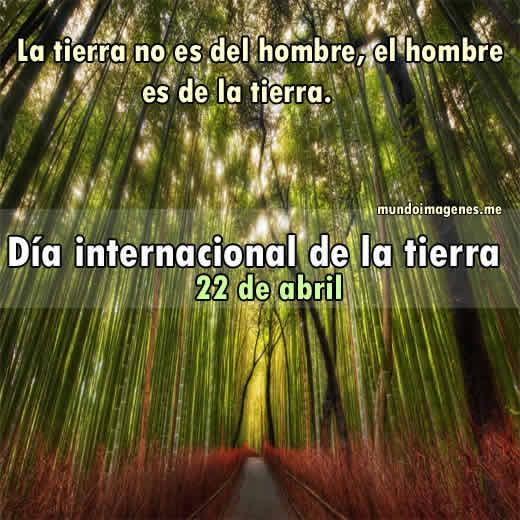 Frases Lindas Para El Cuidado Del Medio Ambiente | MEJOR CONJUNTO DE