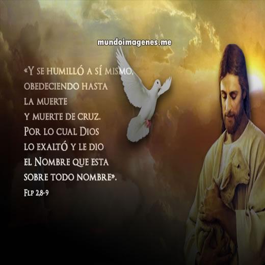 Reflexines para Pascua - Noticias y Artculos - Iglesia