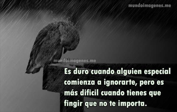 Imagenes Con Frases Tristes De Amor Desamor Y Decepcion Mundo Imagenes Frases Actuales