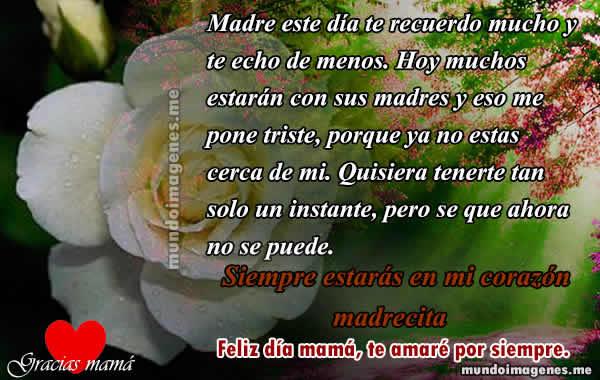 Mensajes Y Frases Para Una Madre Fallecida Con Imagenes