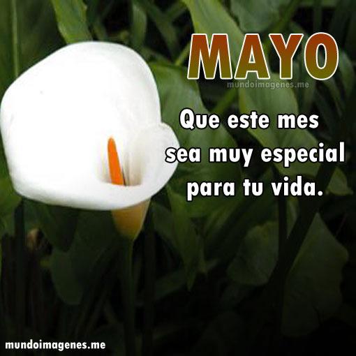 Imagenes Bonitas De Bienvenido Mayo Con Mensajes