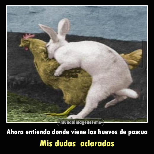 Imagenes Graciosas Con Frases Chistosas De Pascuas