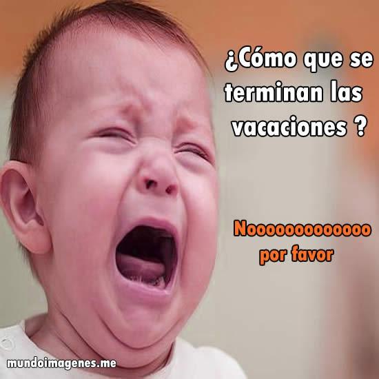 Memes Se Terminaron Las Vacaciones
