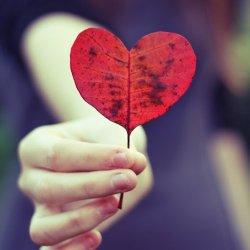 Imagenes Con Frases Tristes De Amor Desamor Y Decepcion