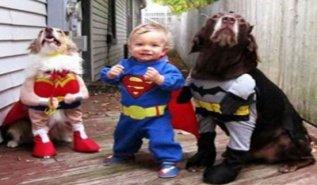 Chistosas Imagenes De Halloween