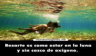 Imagenes Tiernas De Gatos